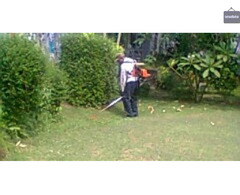 Jasa potong rumput Jakarta wa 085641290679