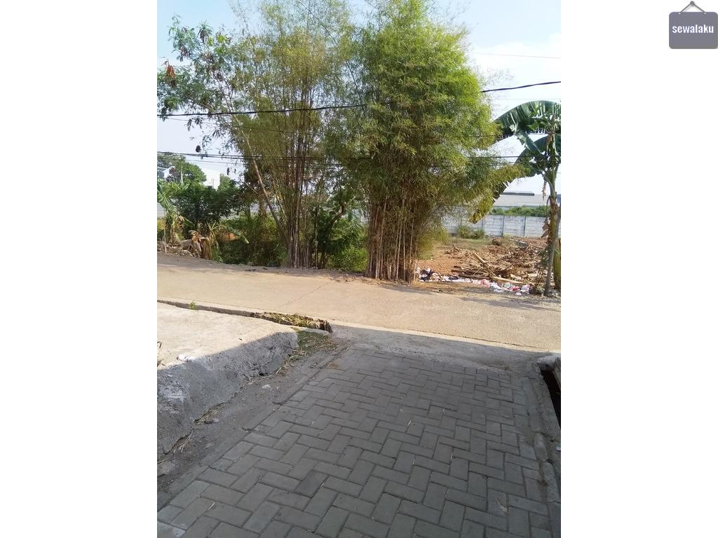 Jasa tebang bambu Jabodetabek wa 085641290679